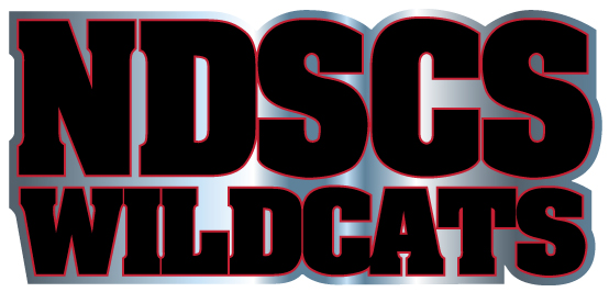 Image For DECAL NDSCS CHROME