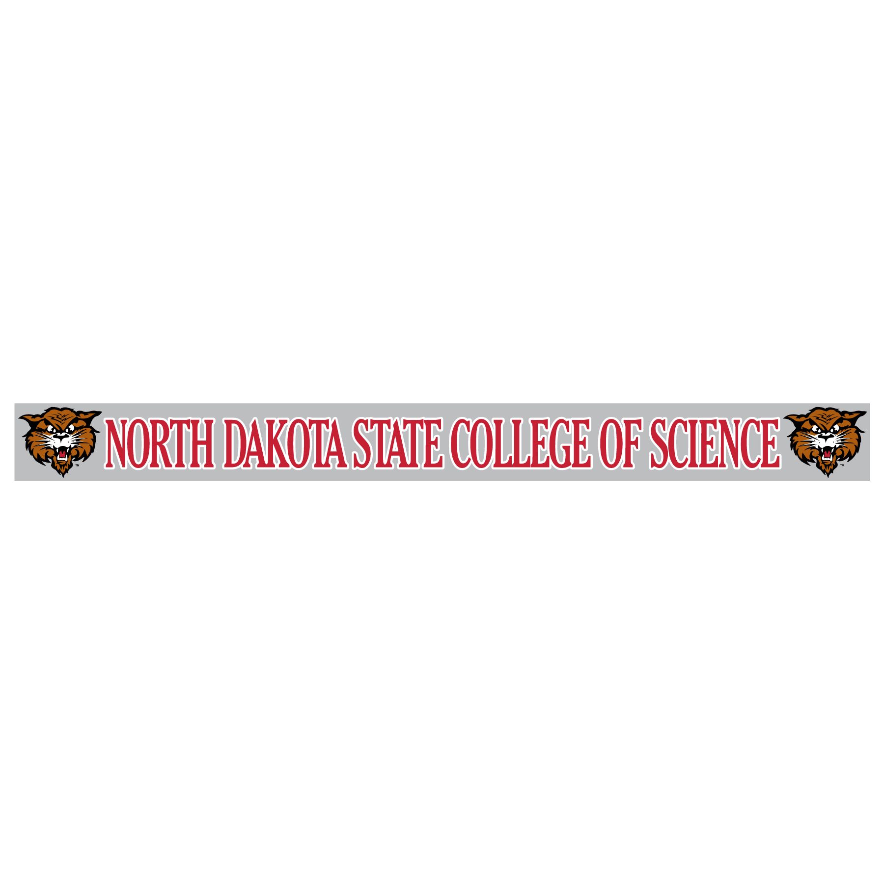 Image For Decal NDSCS Long