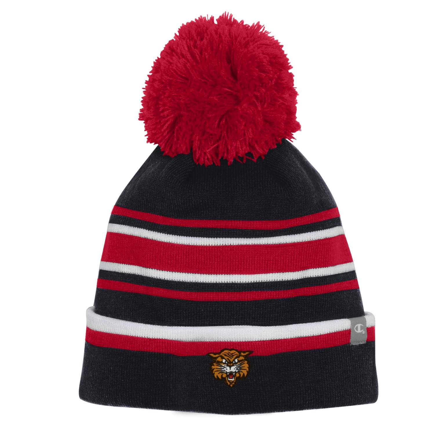 Image For Champion® Striped Beanie